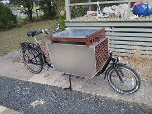 Cargo bike wirh pet carrier